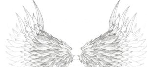 Pair of Wings by Enuma