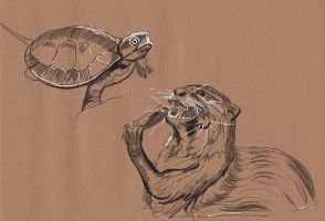 Traditional Sketching 11: Otter and Turtle by IgnazioDelMar