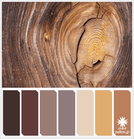 Grain of the wood Colorpallet by colorpallets