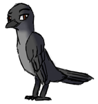 DAT RAVEN by RandomNutz