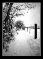 English winter .. by etherkill