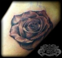 rose inside arm by state-of-art-tattoo