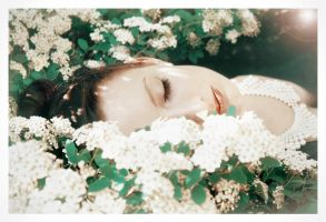 dreaming by Lentilcia