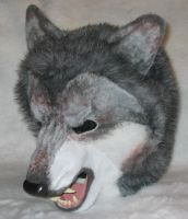 Werewolf Mask -- Top View by Scyndariel