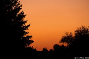 Sunset in Fall by DroePhos
