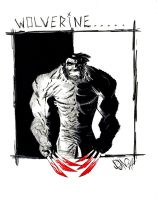 Wolverine black white red by drawhard