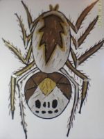 Spider In Oils by Jenn-Coney1976
