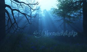 Misty Magic Wood by moonchild-ljilja
