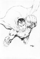Superman_01 by leonartgondim