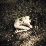 Dead Leaves Cocoon by pauline-greefhorst