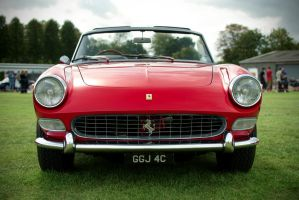 Ferrari 275 GTS by FurLined