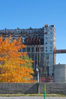 Old Port, Montreal in Fall by knilch