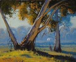 Kangaroo in the Australian Landscape by artsaus