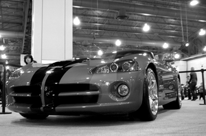 Viper by goldendragonqueen32