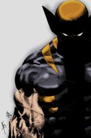 Wolverine by Mike Deodato Jr by Blindman-CB