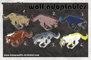 wolf adoptables by Chrizka