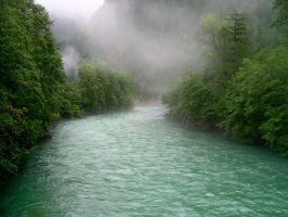 Skagit River Mists by paleoichneum