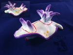 White + Purple Nudibranch by weasels