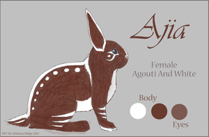 Ajia (FOR SALE) by arbutusbreedery
