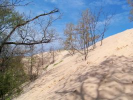 Dune Stock 2 by darchiel