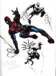 10-20 Spidey color by hdub7