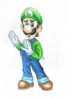 brawl luigi by Tauregil