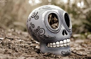 Day of The Dead Skull by musicismylife2010