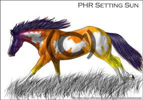 Phr Sunset-fin-c by BrokenRemedies