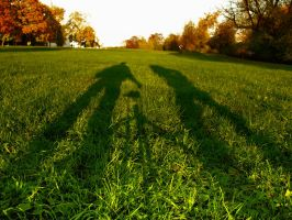 The shadows.. by Elizarars