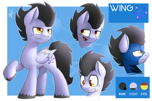 Commission - Wing ref sheet by ShinodaGE