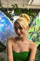 A tinker fairy by TayDS