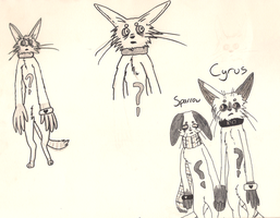 Cyrus And Sparrow Doodles by Fourdd