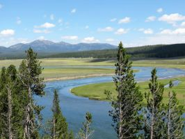 River at Yellowstone by LaurelPhotoandCraft