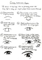 Realistic Eye Tutorial by sarahc01