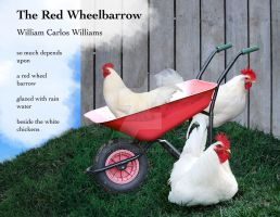 The Red Wheelbarrow by TabathaZee