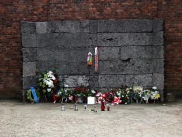 Execution wall in Auschwitz I by tex1991