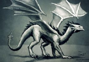 Dragon Sketch by maugryph