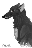 Balto by MatiasBloodbones