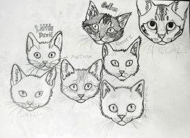Kitty headshots by FoxAndLeo4Ever