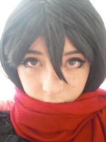 mikasa Ackerman- Face cute by juliettebelle
