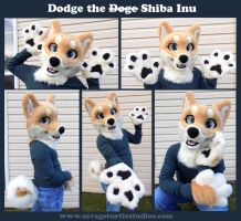 Dodge the Doge by JakeJynx
