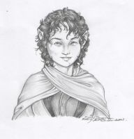 Frodo Baggins by endejester