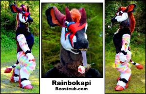 Rainbokapi - Customer Photos by LilleahWest