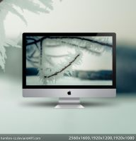Winter wallpaper by hombre-cz
