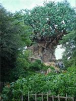 Tree of Life Animal Kingdom2 by WDWParksGal