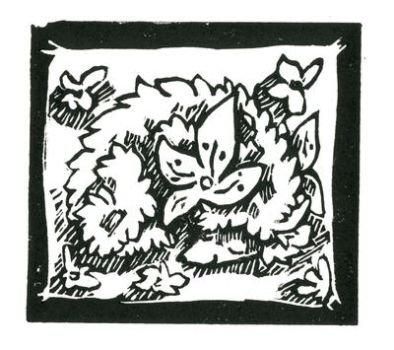 Shaymin Print by Puppy-Chow