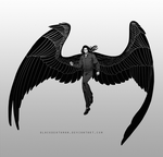 Commission: winged by BlackDeathman