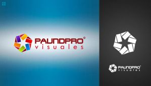 PAUNDPRO Visuales logo by paundpro
