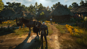 Geralt and Roach in Village by May17th