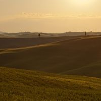 terre di toscana 0490 by bagnino